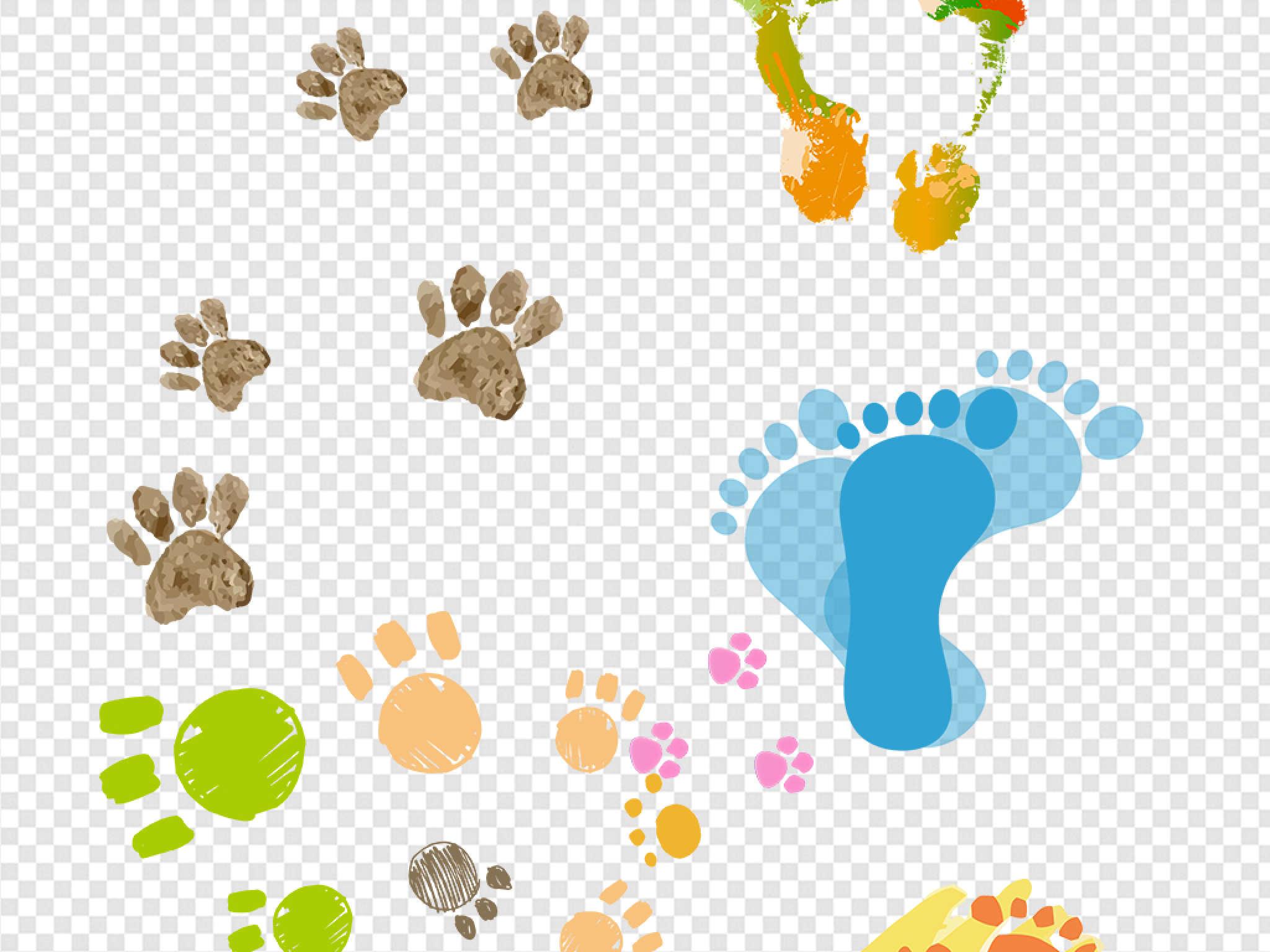 小动物们也开心的留下了自己的脚印!